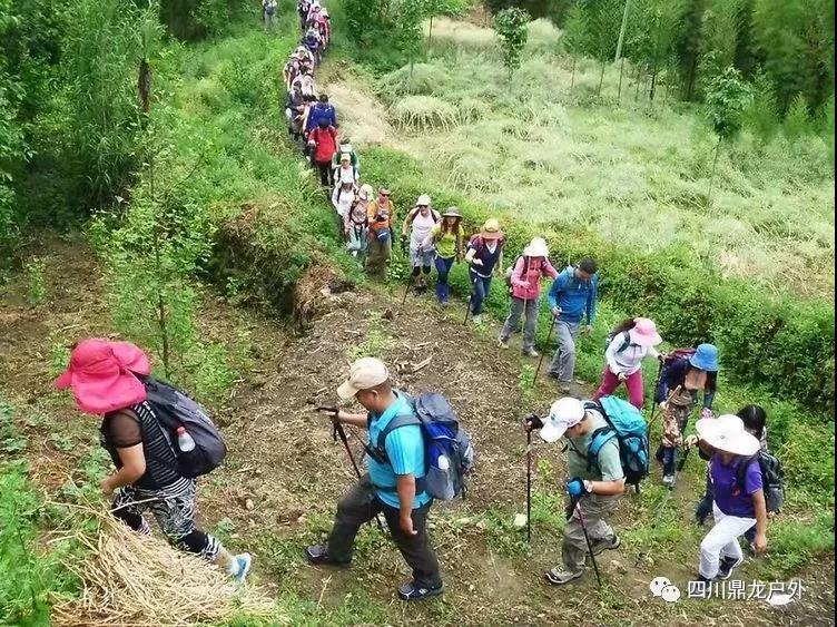 3.30(周六)彭州龙门山徒步挖野菜活动6.jpg