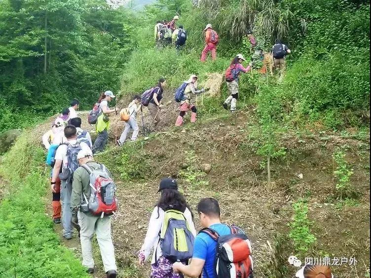 3.30(周六)彭州龙门山徒步挖野菜活动7.jpg