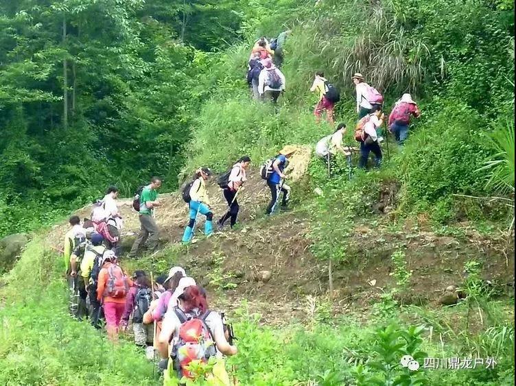 3.30(周六)彭州龙门山徒步挖野菜活动8.jpg